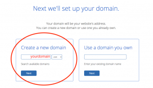 this is where you enter your domain name that you chose