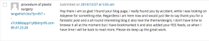 example of spam comment hiding details
