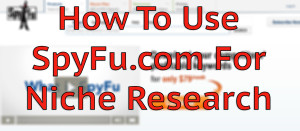 How to use SpyFu for niche keyword research