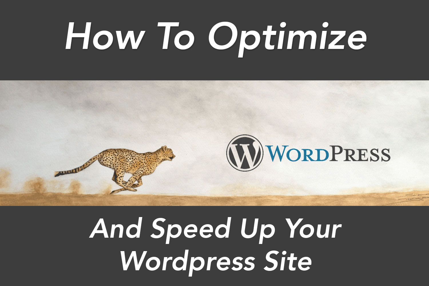 12 Ways To Optimize And Speed Up Your WordPress Website Wiyr